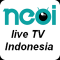 Indonesia TV Live Channels