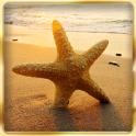 Ocean Beach : Hidden Object