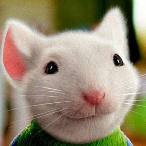 stuart little book report download