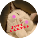 FARTING PETS