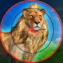Lion Hunting 2017