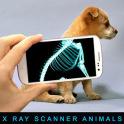 Escáner de Xray Animales broma