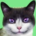 KittyZ Cat