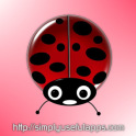 Lucky Ladybug w/RSS Feed LWP