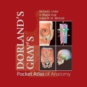 Dorland's Gray's Pocket Atlas of Anatomy
