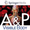Anatomy & Physiology Springer