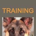 Kiras World Training