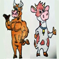 Cow Bull
