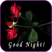 Good Night Messages And wishes Images Gif