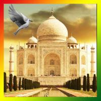 Taj Mahal Birds Live Wallpaper