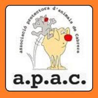 APAC - JOC