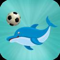 Dolphin Football Show