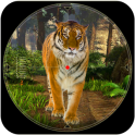 Wild Safari Hunting Game 2019