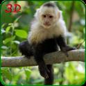 원숭이 시뮬레이터 3D