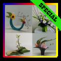 Japanese Ikebana Floral design