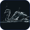 Black Swan HD Live Wallpaper