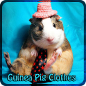 Guinea Pig Clothes