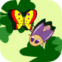 Insect Shape Puzzle