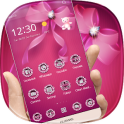 Pink Diamond Bowknot Theme