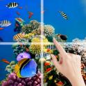 Animal Puzzle Sea