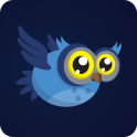 Flappy Owl Cover