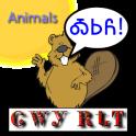 Cherokee Language Animals