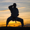Sleep Hypnosis Martial Arts Master