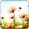 Cool Summer Flower Wallpaper
