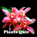 Plants Quiz - for botanists