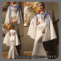 Evening Dress 2017