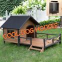 Cool Dog Houses 2017