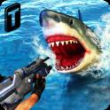 Shark Sniping 2016