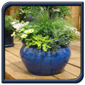 Garden Pots Design Ideas