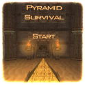 Pyramid Survival