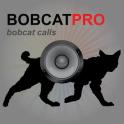 Bobcat Hunting Calls UK