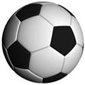 Soccer Stats Lite