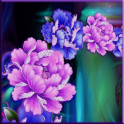 Flower Live Wallpaper Pro