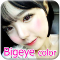 Bigeye Eye Color Studio