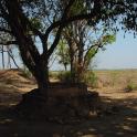 Country India Ekachakra Themes