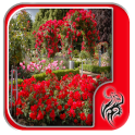 Rose Garden Photos Design