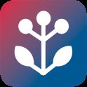 BKK VBU Hausmittel App