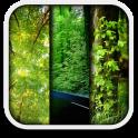 자연과 라이브 배경 화면