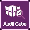 Audit Cube