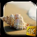सागर की कौड़ी लाइव वॉलपेपर