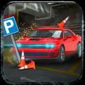 Real World Parking: Simulation