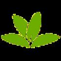 PlantNet Identificación Planta