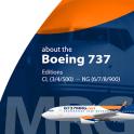 B737 MRG