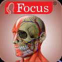Head and Neck- Digital Anatomy