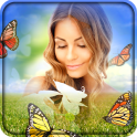 Papillon Cadres photo