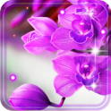 Orchid Free live wallpaper